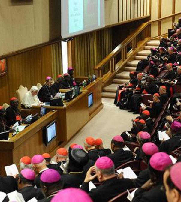 synod 1